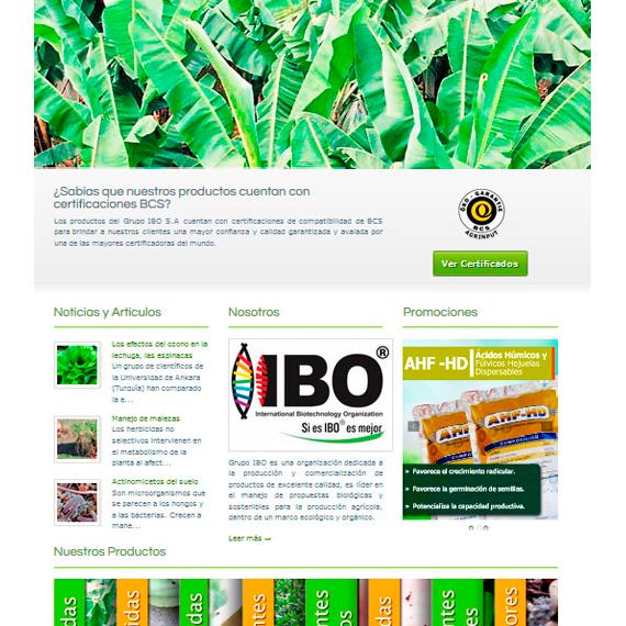 ibo-web