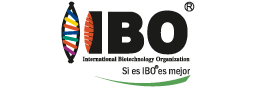 ibo-marca